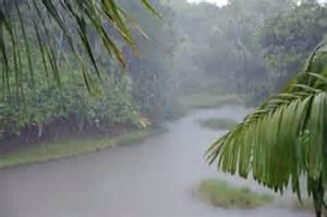 tropical rain storm