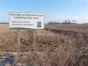 wetland bank